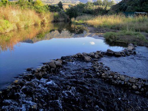 srautas, upė, vandens, uolienos, laukas, medžiai, sterkspruit upė, Drakensberg