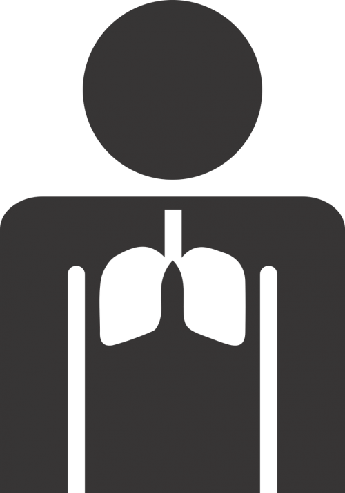 Stick figūra,plaučiai,figūra,Sportas,Stick,balta,diena,naudinga,svoris,sveikas,sveikatos apsauga,gyvenimo būdas,nemokama vektorinė grafika