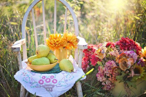 natiurmortas,natiurmortas,vis dar,gyvenimas,kriaušės,gėlės,kritimas,ruduo,gamta,šviežias,sveikas,natūralus