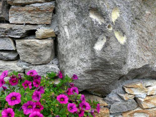 Akmuo, Granitas, Ticino, Šveicarija