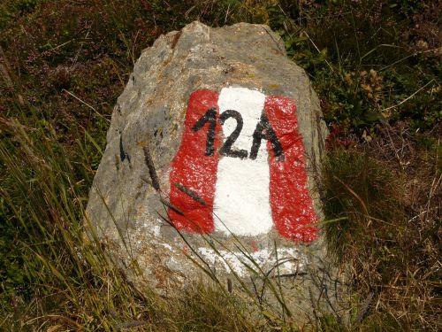 akmuo,migracijos pobūdis,požymiai,ženklas