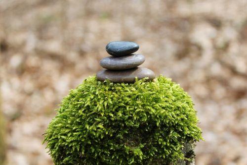 akmens krūva,krūva,akmenys,balansas,vis dar,atsipalaidavimas,poilsis,Uždaryti,gamta,zen,meditacija,atsipalaiduoti,akmens balansas,motyvacija,kraštovaizdis,samanos,krūva,deko,apdaila