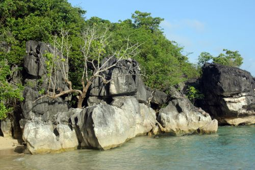 akmenys, dideli & nbsp, akmenys, objektas, šlapias & nbsp, akmenis, gamta, kraštovaizdis, akmenys & nbsp, ir & nbsp, medžiai, medžiai, didelis & nbsp, akmuo, gyvas & nbsp, akmuo, baltos spalvos & nbsp, smėlis, smėlis, gamta & nbsp, akmuo, kūrybinis & nbsp, akmuo, juodi & nbsp, akmenys, akmuo & nbsp, siena, kiti, akmens siena jūroje