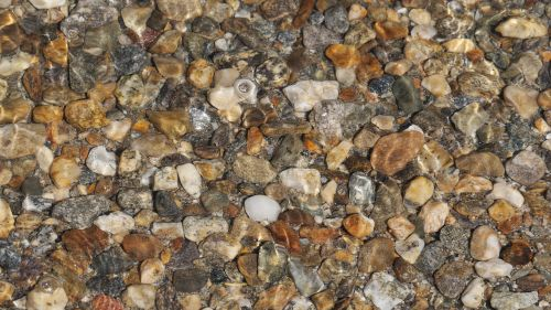 akmenys,padengtas vandeniu,Rokas,šlapias,natūralus,lauke,padengtas,parkas,vaizdingas,upė,aišku,srautas,gamta,vanduo