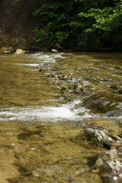 akmenys,skalūnai,upė,Gorge,mudrock,moliūgai,natūralus,nepheline