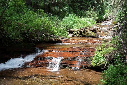 srautas,upelis,kalnų upelis,kalnų upelis,miškas,lauke,gamta,vanduo,Rokas,krioklys,kalnas,peizažas