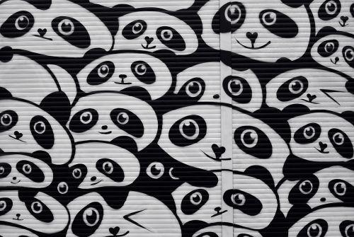 gatvės menas,grafiti,sienų tapyba,miesto menas,alternatyva,purkštuvas,Berlynas,kreuzberg,žaliuzių,panda,turėti,menas