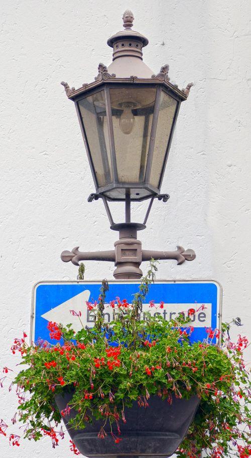 gatvės lempa,kelio zenklas,juokinga nuotrauka,juokinga,pakabinamas krepšys,gatvės apšvietimas,gėlių apdaila