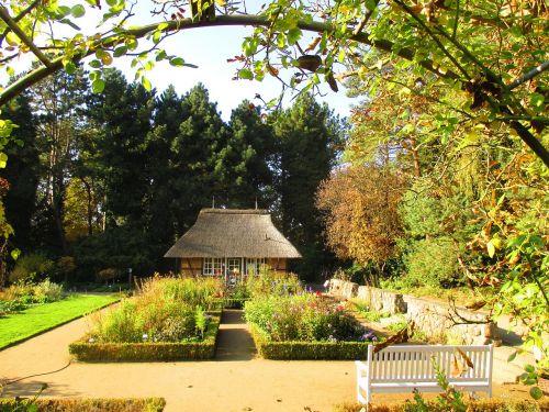 vasara,vasaros diena,saulė,parkas,botanikos sodas,hamburgas,beete,gėlės,nuostabi diena,ruduo,fachwerkhaus
