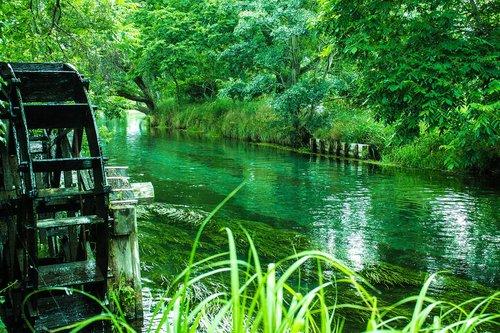 vasara, keturi sezonai, Japonija, upė, vandens ratas, Saunus, žalias, vandens srautas, srautas, vasarą trauktis, Nagano, azumino, Turizmas, kelionė, Wasabi