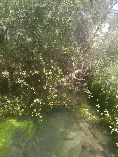 vasara, upelis, krūmas, akvarelė, poveikis, upė, vanduo, vasaros upelis