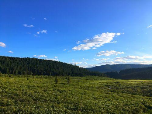 saulė,kalnai,vasara,kraštovaizdis,gamta,dangus,lauke,saulėtas,miškas,žalias,pieva,saulės šviesa,scena,vaizdingas,Alberta,Kanada,žygiai