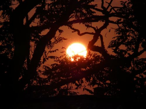 saulė,atgal šviesa,nuotaika,bolidas,saulėlydis
