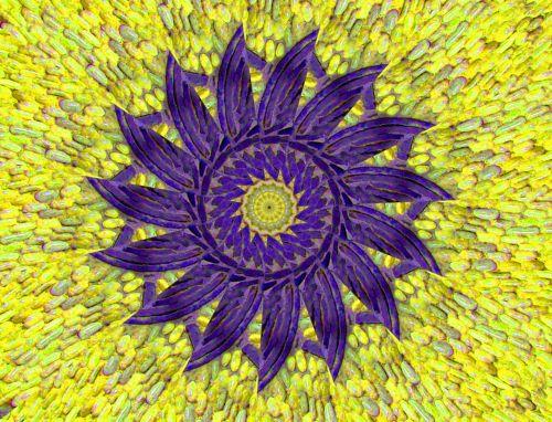 saulė, fonas, spinduliai, tapetai, modelis, dizainas, violetinė, geltona, saulės šablono fonas