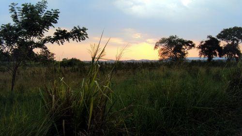 saulės komplektas,Trincomalee,Šri Lanka,Anuradhapura,paddy laukas,kraštovaizdis,dykuma,peizažas,natūralus,laukiniai,lauke,aplinka,vaizdingas,žemė,gamta