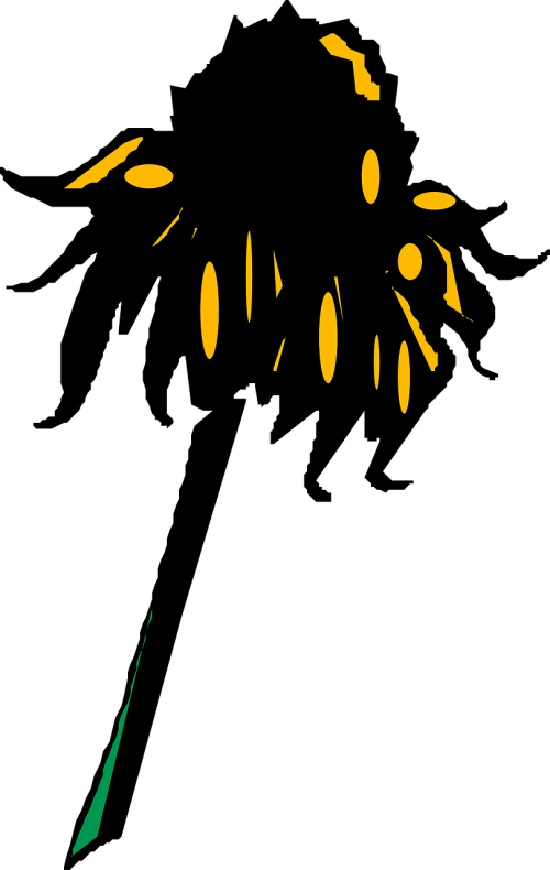 saulėgrąžos,nuvalytas,žiedlapis,sausas,žydėti,žiedas,wilt,laukas,žiedadulkės,stiebas,nudrus,nudrus,augalas,gamta,gėlė,nurimo,sezoninis,metinis,mirti,susitraukti,lapija,stiebas,nemokama vektorinė grafika