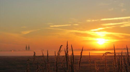 saulėtekis,rūko šviesa,dangaus simboliai,Oschatz,saulė,Šiaurės Saksonija,Saksonija