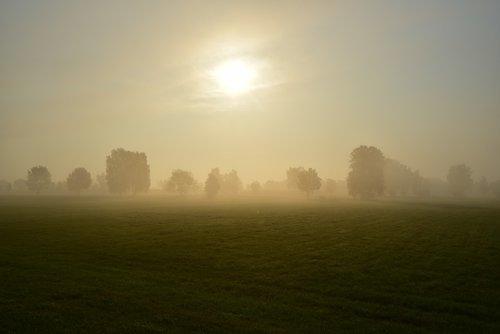 Sunrise, rytą rūkas, pobūdį, nuotaika, kraštovaizdis, saulė, morgenstimmung, rūkas, dangus, rytą, Dawn, atmosfera, poilsio, rūkas, atmosferos, Morgenrot, medžiai, migla