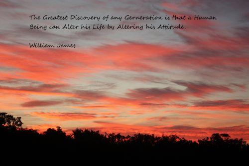 gamta, saulėtekis, kraštovaizdis, debesys, rožinis, violetinė, medžiai, siluetas, motyvacija, atradimas, požiūris, saulėtekio atradimas