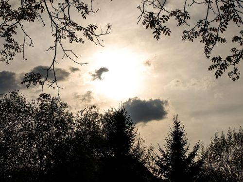 saulėlydis,dusk,medžiai