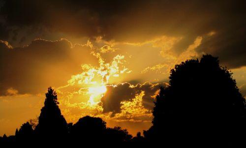 saulėlydis,saulė,balta,šviesa,auksas,šviesus,žėrintis,geltona,šlovingas,šviesus,medžiai,siluetai
