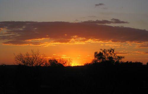 saulėlydis,šviesus,oranžinė,saulė,debesis,apvadu,šviesus,žėrintis,krūmas,dangus