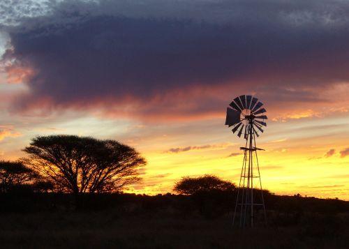 saulėlydis,vėjo malūnas,afrika,ūkis,akacijos medžiai,pietų Afrika