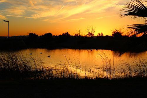 saulėlydis,Arizona,vanduo