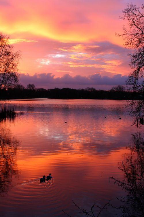 saulėlydis,ežeras,abendstimmung,gamta,debesys,kraštovaizdis,vandens atspindys,atmosfera,raudona