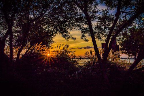 saulėlydis,vakaras,vanduo,gamta,kraštovaizdis,saulė,dangus,vasara,lauke,oranžinė