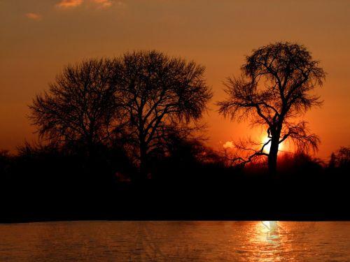 saulėlydis,romantiškas,romantiškas,vakaras,upė,Diuseldorfas,rinas,upės kraštovaizdis,kraštovaizdis,niederhein,medžiai,Vokietija