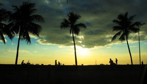 saulėlydis, apsvaiginimo & nbsp, saulėlydis, gražus & nbsp, saulėlydis, vandenynas, jūra, apmąstymai, žmonės, šešėlis, kokoso & nbsp, medis, saulėlydis Manilos įlankoje