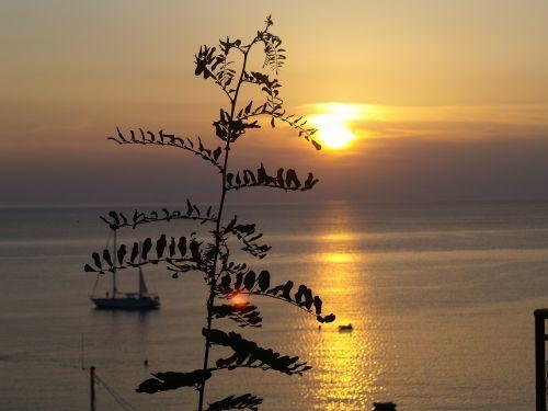 saulėlydžiai,vasara,jūra