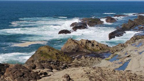 papludimys, oregonas, vandenynas, naršyti, pakrantė, kraštovaizdis, naršyti ir uolų