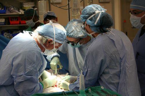 chirurgija,donoras,transplantacija