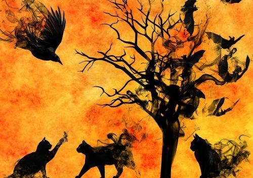 sirrealis,scena,atmosfera,mistinis,paslaptis,magija,niūrus,fantazija,katė,siluetas