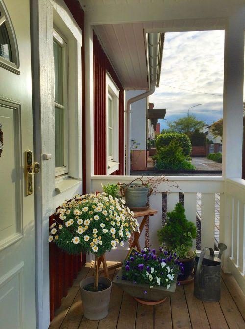 Švedijos namai,Švedija,durys,įvestis,Švedijos namai,Švedijos,draugiškas,namai,kelias,gražus