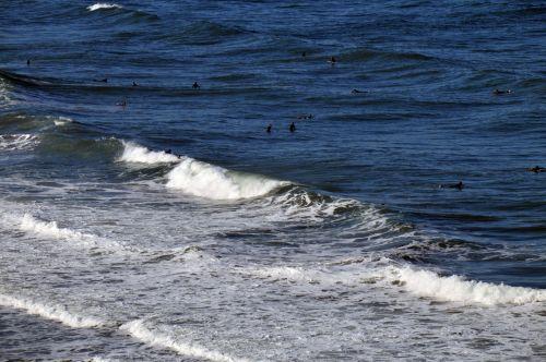 vandenynas, banga, bangos, jūra, papludimys, vanduo, plaukti, maudytis, žaisti, žmonės, siluetas, maudytis vandenyne