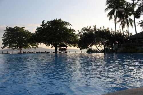 plaukimo baseinas, lauke, maudytis, vanduo, gėlės, medžiai, lapai, augalai, skėtis, poilsis, atsipalaiduoti, atostogos, plaukiojimo baseinas
