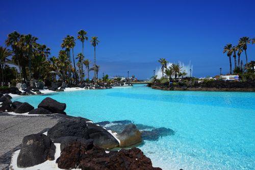 plaukiojimo baseinas,baseinas,plaukti,mėlynas,vanduo,atnaujinti,lauko baseinas,linksma maudytis,aišku,Saunus,šlapias,jūros vandens baseinas,lago martiánez,Puerto de la Cruz,Tenerifė,Kanarų salos,plaukiojimo baseinas,palmės