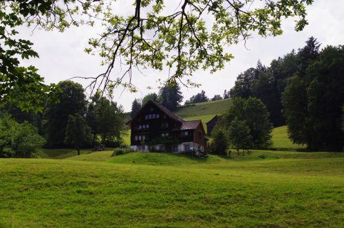 Šveicarija, swiss, kalnai, peizažas, vasara, namas, pateikti, Šveicarijos peizažas