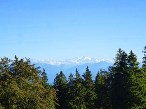 Šveicarija,Alpės,kraštovaizdis,mėlynas,kalnai,gamta,sniegas,mėlynas dangus