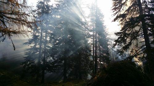 kalnai, Šveicarija, civilinė & nbsp, paslauga, Prisiminti, panorama, gražus, Šveicarija kiwiilock