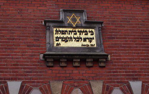 sinagoga,istorinis pastatas,Nyderlandai,Jėzus,hebrajis,Dovydo žvaigždė,judaizmas,maĝeen david,magen david