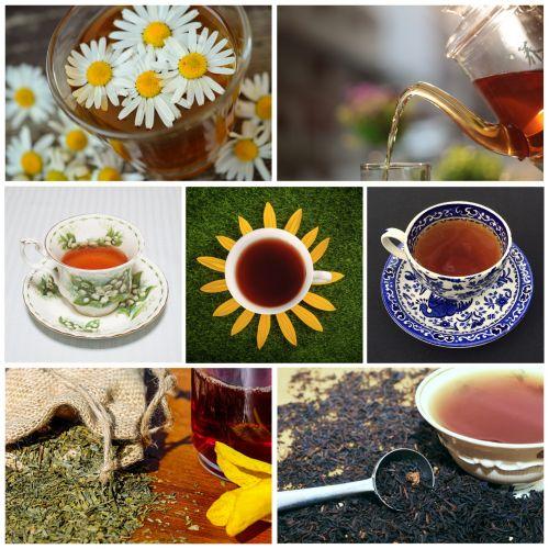 arbata, gerti, arbata, pilamas, lapai, arbata & nbsp, lapai, taurė & nbsp, arbata, gėlės, ramunė, ramunėlė & nbsp, arbata, žalias, juoda & nbsp, arbata, balta & nbsp, arbata, koliažas, gerti, arbata & nbsp, gėrimas, Laisvas, viešasis & nbsp, domenas, arbatos koliažas