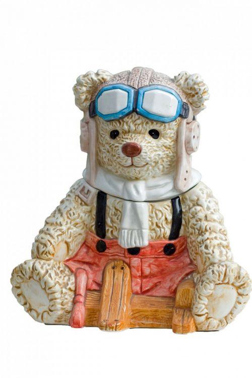Teddy,turėti,meškiukas,ornamentas,aviatorius,pilotas,mielas,izoliuotas,balta,fonas,nuotrauka,vaizdas