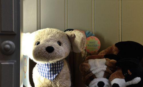 Teddy,turėti,neša,Minkšti žaislai,meškiukas,žaislai,vaikų žaislai,dovanos,Minkšti žaislai,Kalėdos,mielas,vaikai,juokinga,pliušas