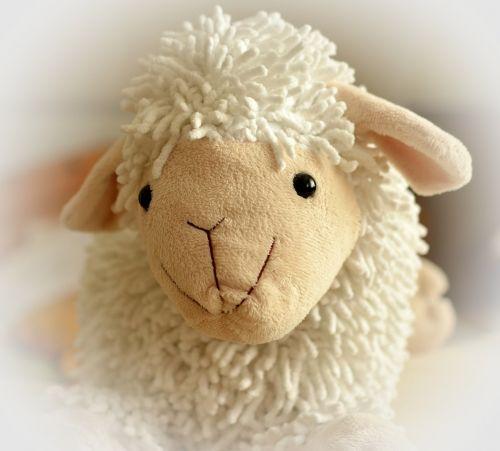 meškiukas,avys,minkštas,linksma,mielas,vaikų žaislai,minkštas žaislas