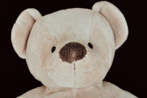 meškiukas,Teddy,minkštas žaislas,iškamša,mielas,minkštas,Uždaryti,portretas