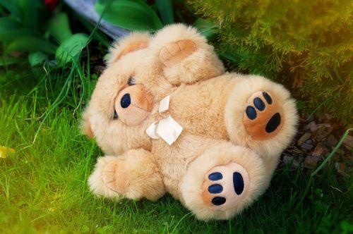 meškiukas,iškamša,minkštas žaislas,Teddy,minkštas,šviesiai ruda,sodas,Uždaryti